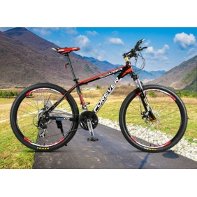 24-Inch Auminum Alloy Frame Crankset Locked Disc  21 Speed Mountain Bike