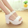 Thick Bottomed Waterproof Muffin Fish Head High-heeled Roman Sandals Shoes