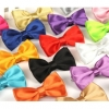 Pure Polyester Men Multi-Color Bow Tie