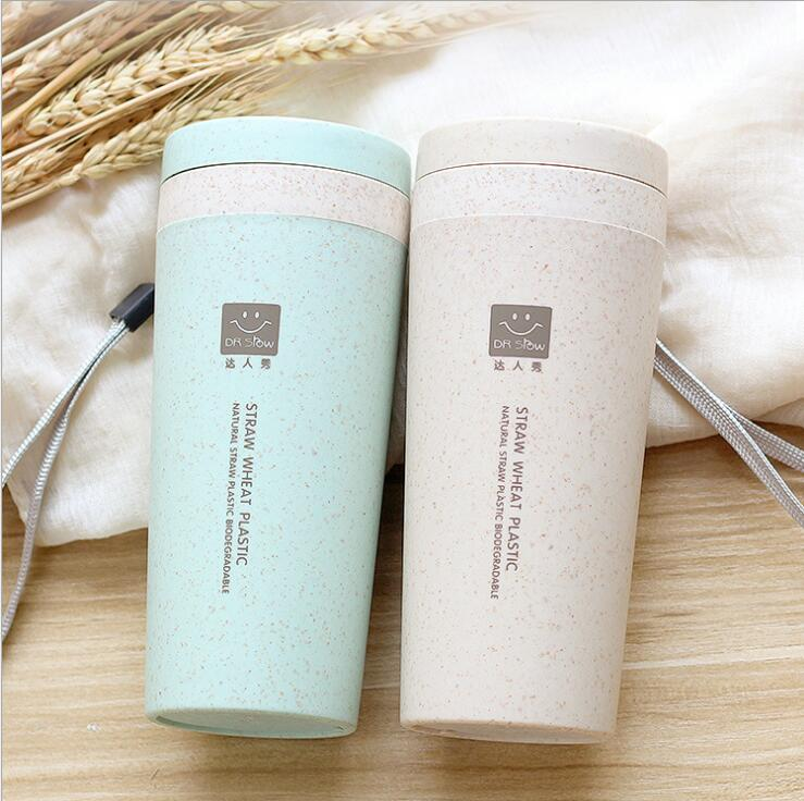 Biodegradable Classical Creative Wheat Straw Double Layer Insulation Portable Cup