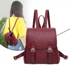 Korean Women's Simple Double Belt Design College Style Casual Backpack